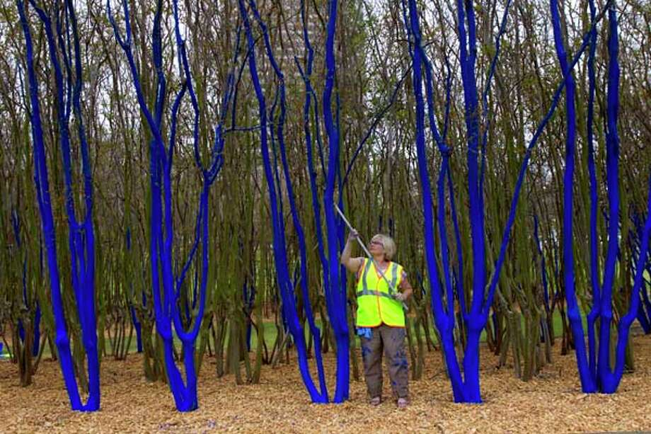 Konstantin Dimopoulos' isn't from Houston, but that didn't stop him from coloring some of our trees blue. The result is odd and fantastic. The temporary public art installation was located at 3201 Allen Parkway. Photo: Cody Duty, Houston Chronicle / © 2013 Houston Chronicle