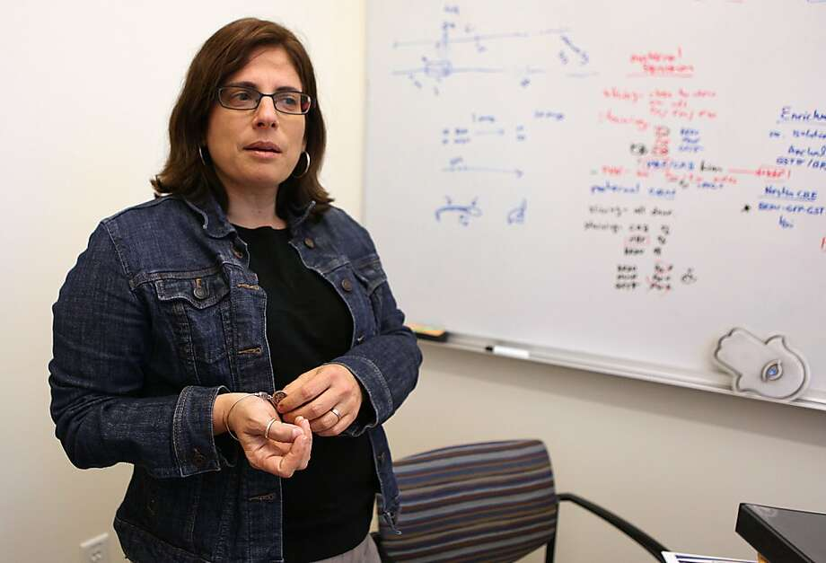 UC Berkeley Professor Daniela Kaufer showed that brief periods of stress can enhance mental performance in rats. Photo: Liz Hafalia, The Chronicle
