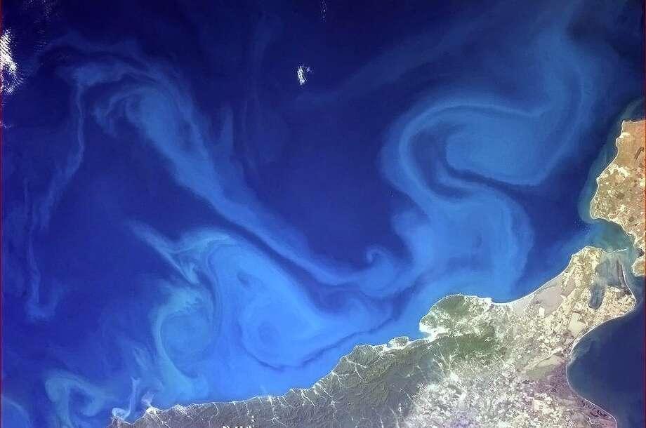 Dr. Seuss-inspired swirls in the Black Sea. Photo: Col. Chris Hadfield/CSA/NASA
