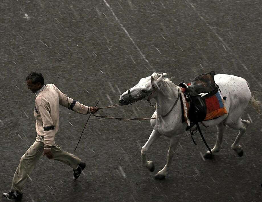 A surprise shower in Shimla: A horseman leads his steed during an sudden, unseasonal downpour in Shimla, India. Photo: Strdel, AFP/Getty Images