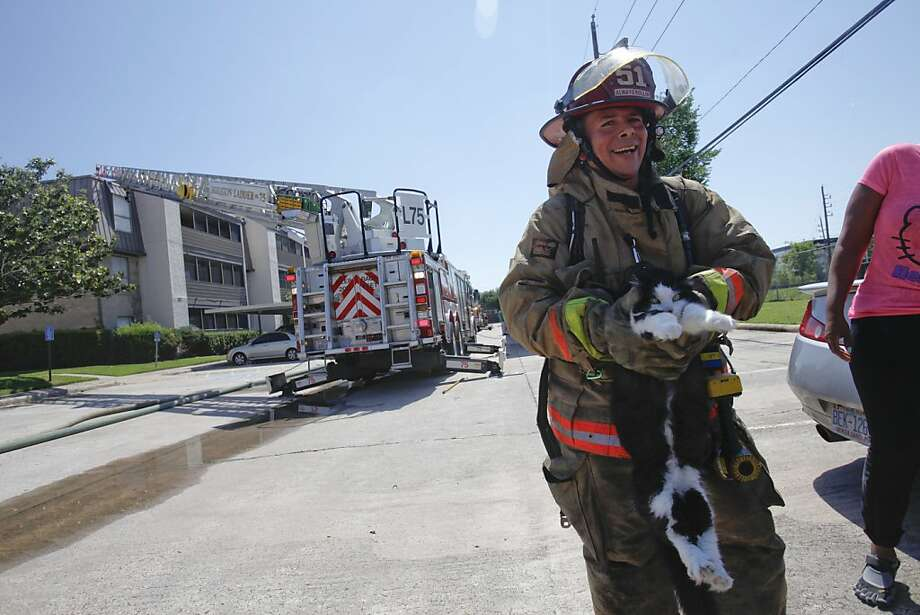 Help, I need saving again:While Simon Hernandez is, by all accounts, a brave and skilled firefighter, he 