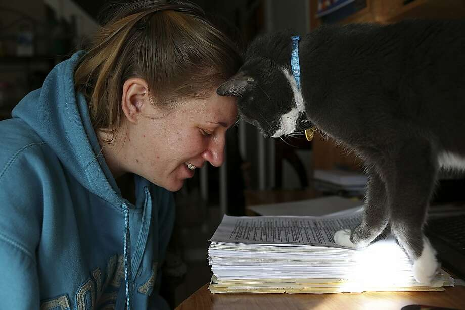 Cats are totally allowed to walk over important documents in order to deliver head butts. (Anna Moore and 