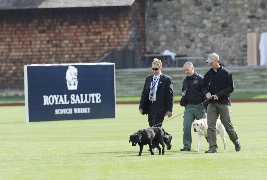 Bomb-sniffing dogs roam the field at the Greenwich Polo Club, Wednesday, May 15, 2013. Prince Harry is playing in a charity match at the club. The match is raising funds for Sentebale, a charity Harry co-founded in 2006 in memory of his late mother, Princess Diana. Photo: Bob Luckey / Greenwich Time