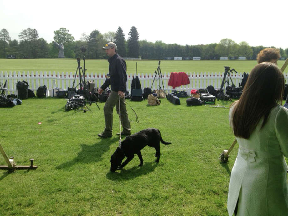 Bomb-sweeping dogs roam the field at the Greenwich Polo Club, Wednesday, May 15, 2013. Prince Harry is playing in a charity match at the club. The match is raising funds for Sentebale, a charity Harry co-founded in 2006 in memory of his late mother, Princess Diana. Photo: Bob Luckey / Greenwich Time