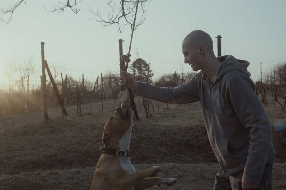 My Dog Killer: Fornay's second feature follows a day in the life of 18-year-old Marek who lives on the Slovak-Moravian border. Marek's best friend and only confidant is his dog as he deals with the hooliganism of his skinhead friends and his single father. North American Premiere (d: Mira Fornay c: Adam Mihál, Marián Kuruc, Irena Bendová, Libor Filo, Slovakia/Czech Republic 2013, 90 min) Photo: Courtesy Photo