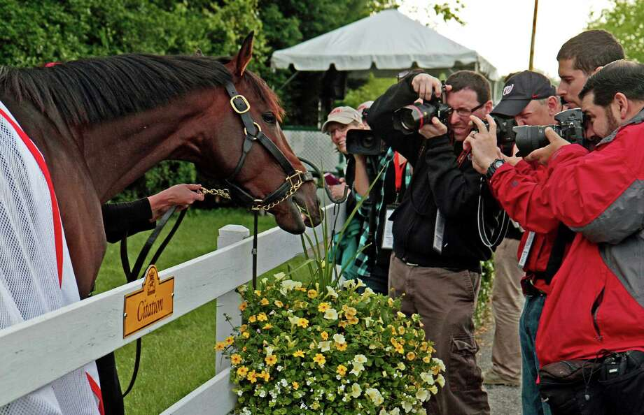 Kentucky Derby winner Orb grabs a snack from a flower basket outside the stakes barn at Pimlico Race Course Wednesday, May 15, 2013, in Baltimore, as photographers capture every bite. The Preakness Stakes horse race is Saturday. Photo: Garry Jones