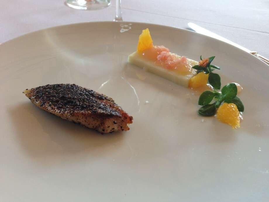Mackerel crusted in juniper berries with gin panna cotta and succulents