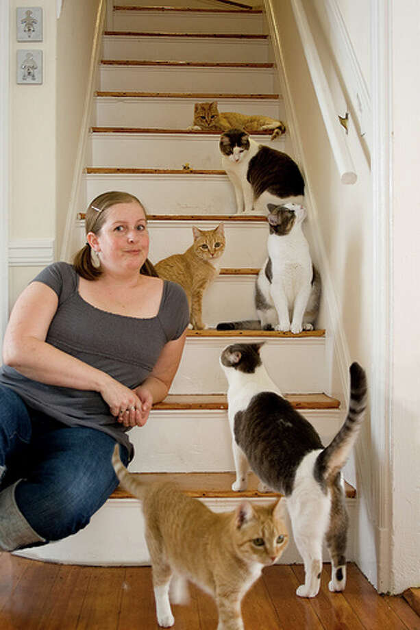 Crazy animal lovers: Most people have one or two pets, but someone with dozens can be a menace. No one wants to live next door to crazy cat lady. Photo: splityarn, FlickrSource: Estately Photo: File
