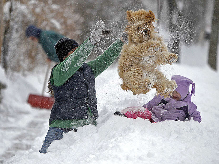 10. Minneapolis, MN: Fun (??) in the snow with Fido. Picture via ELIZABETH FLORES/MCT/ZUMA Photo: Elizabeth Flores / MCT