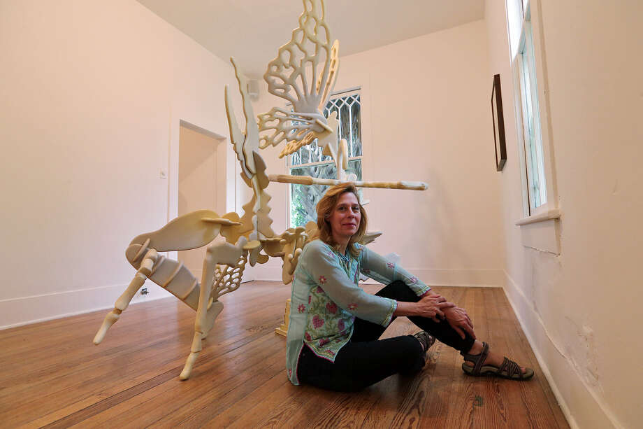 "Jayne Lawrence uses what she calls ""the architecture of nature"" in ""Infestation,"" on exhibit at Sala Diaz. Photo: Jerry Lara / San Antonio Express-News"