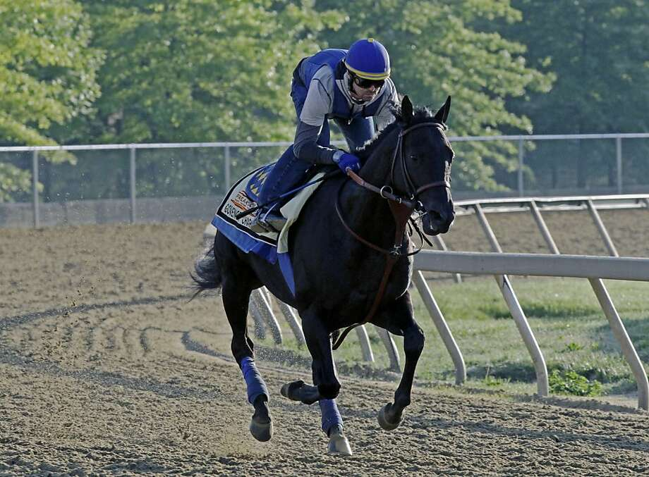 Exercise rider Jorge Alvarez gallops Preakness Stakes entrant Governor Charlie at Pimlico Race Course Friday, May 17, 2013 in Baltimore. The Preakness Stakes horse race is scheduled for Saturday.  Photo: Garry Jones, Associated Press