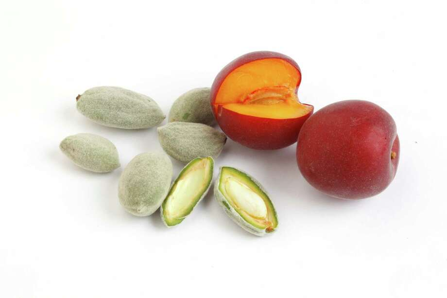 Sheraton also offers a nod to green almonds, which you can find, along with a wide variety of other seasonal produce, at the Alemany Farmers' Market in San Francisco. Photo: Craig Lee / Craig Lee / Special To The Chronicle / ONLINE_YES