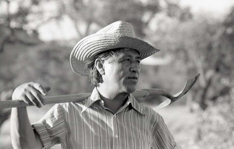 Cesar Chavez's commitment, sacrifice and triumph in unionizing grape pickers is the focus of the film being released 21 years after the labor leader's death. Photo: Courtesy Of Cathy Murphy