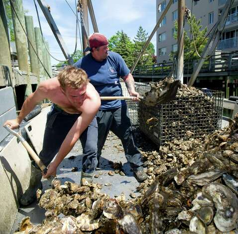 Colin Higgins, left, and Captain Steve Hopkins, right, unload oysters from a boat at Norm Bloom and Son in Norwalk, Conn., on Friday, May 17, 2013. Photo: Lindsay Perry / Stamford Advocate
