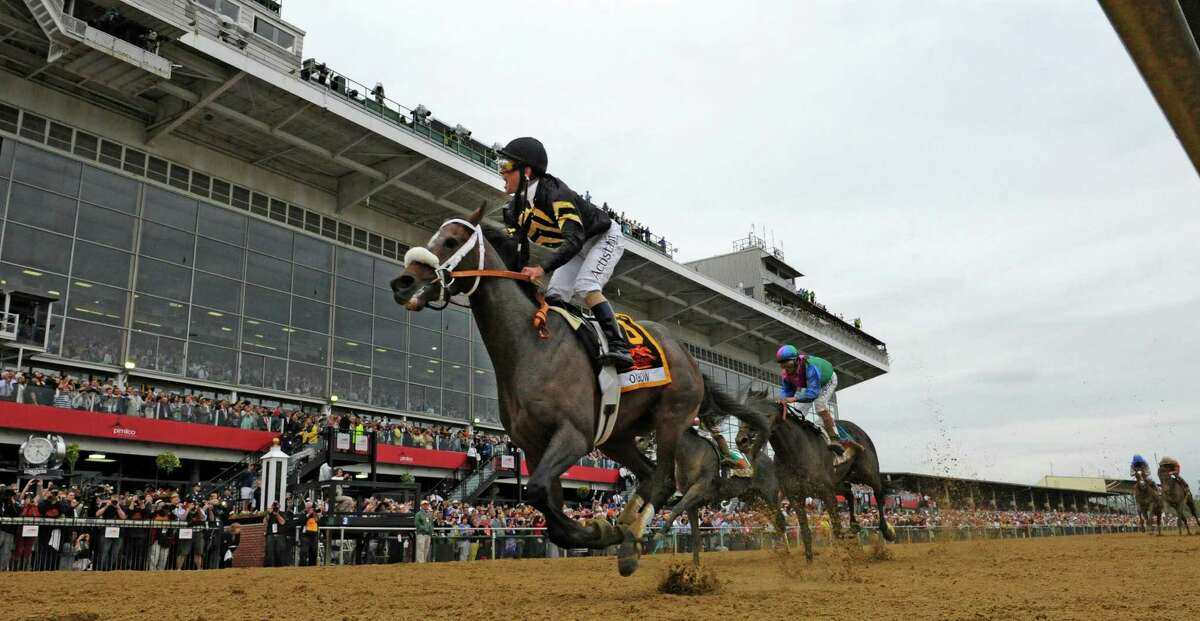Oxbow ridden by veteran jockey Gary Stevens wins the 138th running of the Preakness Stakes May 18, 2013 at historic Pimlico Race Course in Baltimore, Maryland. This was the second jewel of the thoroughbred racing's triple crown. Kentucky Derby winner Orb finished fourth. (Skip Dickstein/Times Union)