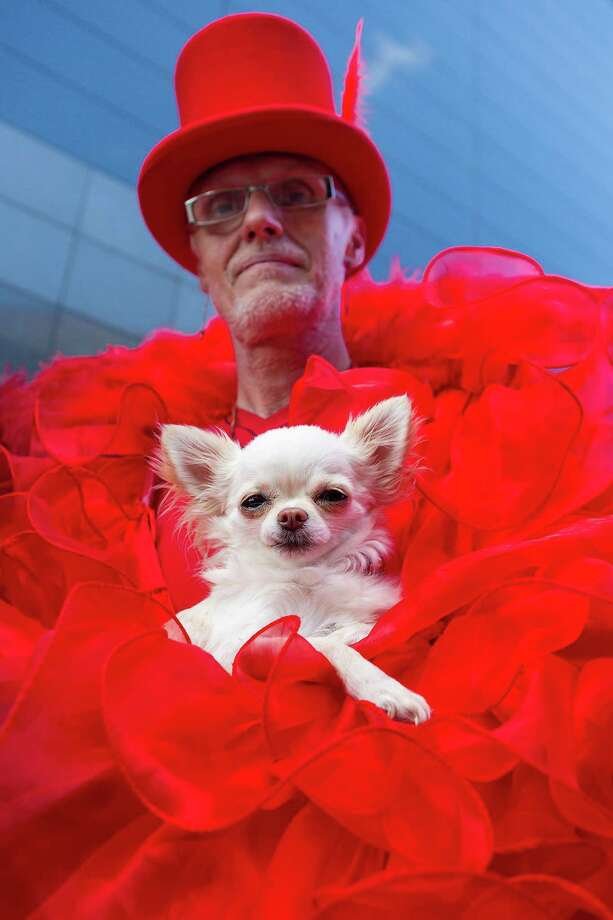 A man in a red costume holds a Chihuahua dog on the second day of the annual Wave-Gotik Treffen, or Wave and Goth Festival, on May 18, 2013 in Leipzig, Germany. The four-day festival, in which elaborate fashion is a must, brings together over 20,000 Wave, Goth and steam punk enthusiasts from all over the world for concerts, readings, films, a Middle Ages market and workshops. Photo: Marco Prosch, Getty Images / 2013 Marco Prosch