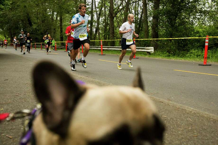 A record-setting 11,000 attendees participated in the 31st annual Nordstrom Beat the Bridge event Sunday, May 19, 2013, in Seattle. The fundraiser for JDRF is the largest charitable supporter of type 1 diabetes research. The event consists of an 8K run and wheelchair race, a 4-mile walk, a 1-mile fun run and the Diaper Derby for toddlers. Photo: JORDAN STEAD, SEATTLEPI.COM / SEATTLEPI.COM