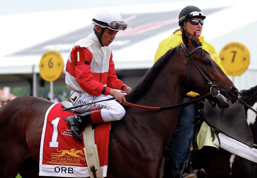 BALTIMORE, MD - MAY 18:  Orb #1, ridden by Joel Rosario, trots during the parade lap prior to the 13