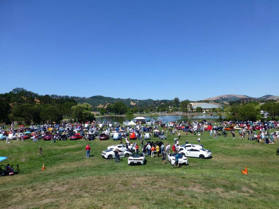 An overall view of the Marin Concours d'Elegance, held near the Marin County Civic Center, San Rafael, Calif.