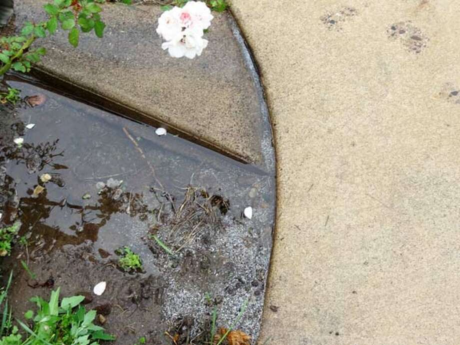 "The Yard, Driveway, and Patio—While It's RainingThe next time you're at home during a driving rainstorm, throw on that old raincoat and boots and take a stroll around the house. You'll be able to spot any potential drainage problems. ""See where the water goes,"" Stakhiv says. ""If you notice any pools, like close to the driveway or patio, it could wash away the soil."" 