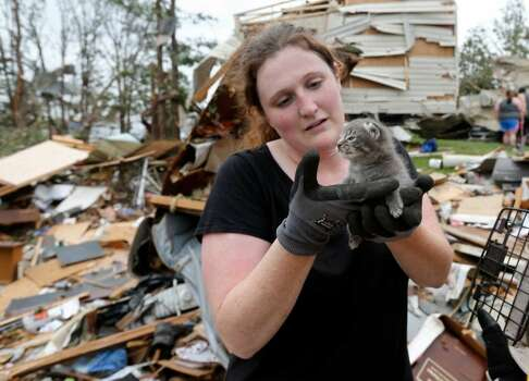 Maeghan Hadley, of One Day Ranch pet rescue, checks over a kitten pulled from under the rubble of a mobile home destroyed by Sunday's tornado in the Steelman Estates Mobile Home Park, near Shawnee, Okla., Monday, May 20, 2013.
