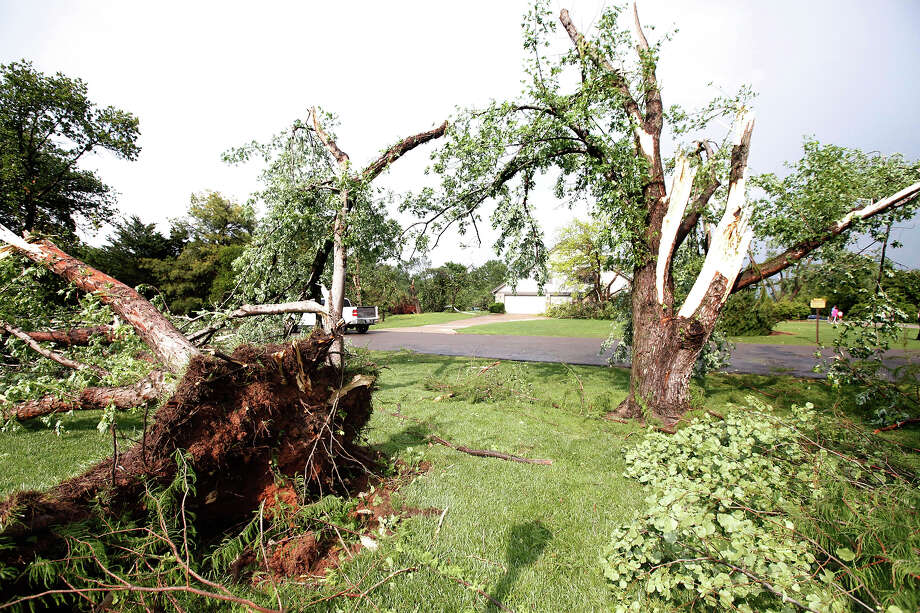 Trees uprooted at a home at Persimmon Creek and Yucca in the Arrowhead Hills addition in Edmond, Okla., lay across a lawn after a tornado touched down, Sunday, May 19, 2013. Photo: Paul Helstern, ASSOCIATED PRESS / AP2012