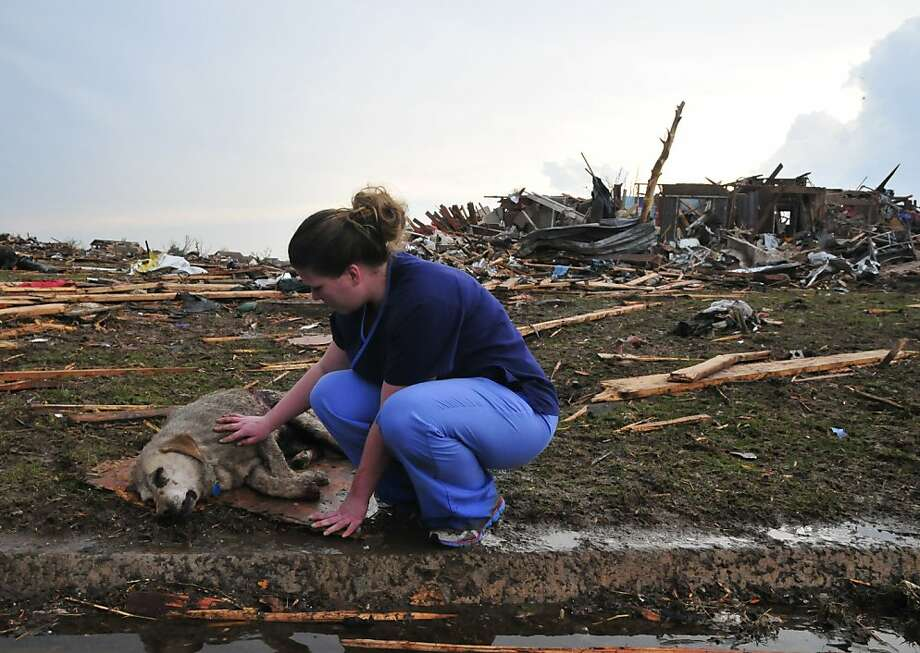 Tiffany Bauman comforts a dying dog  injured by Monday's tornado in the neighborhood of  Westmoor, near Moore, Okla., May 20, 2013. A huge tornado, perhaps a mile wide, tore through towns near Oklahoma City on Monday, killing at least 37 people and sending rescuers and residents dashing to dig out survivors buried in rubble. (Nick Oxford/The New York Times) Photo: Nick Oxford, New York Times
