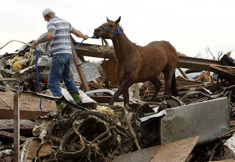 Rescuers recover a horse from the remains of a day care center and destroyed barns, Monday, May 20, 2013  in Moore, Okla. A monstrous tornado roared through the Oklahoma City suburbs, flattening entire neighborhoods with winds up to 200 mph, setting buildings on fire and landing a direct blow on an elementary school. (AP Photo/The Oklahoman, Steve Sisney) Photo: Steve Sisney, Associated Press