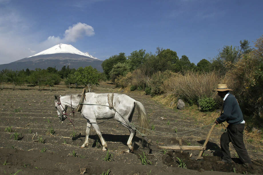 "A peasant is seen working as Popocatepetl Volcano, Mexico's second highest peak, just 55 kms southeast of Mexico City, is seen from Santiago Xalitxintla, in Puebla, on May 18, 2013 spewing a cloud of ash and smoke. The National Disaster Prevention Centre (CENAPRED) raised the alert level  to ""yellow phase three."" Photo: AFP, AFP/Getty Images / 2013 AFP"
