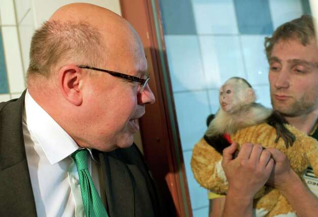 German Minister for Environment Peter Altmaier visits Justin Bieber's capuchin monkey Mally at the animal shelter in Munich southern Germany, Tuesday, May 21, 2013. Justin Bieber's pet monkey is now the property of Germany. Mally was seized by German customs March 28 when Bieber failed to produce required vaccination and import papers for the animal after landing in Munich for a European tour. He had until midnight Friday to produce those documents. Customs spokesman Thomas Meister said the customs authority issued an order later Tuesday formally transferring ownership of the animal to the German state. (AP Photo/dpa, Peter Kneffel) Photo: Peter Kneffel