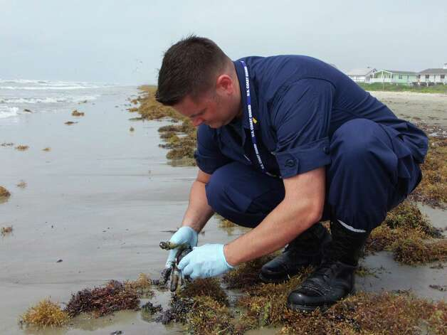 Ensign Anthony Scott, with the U.S. Coast Guard, collects clumps of wet oil Monday May 20, 2013,  just east of Galveston's Bermuda Beach in Texas.   State officials say a very minor oil spill has led to tar balls washing up on more than 2 miles of Galveston beaches. Photo: Chris Paschenko, The Galveston County Daily News / The Galveston County Daily News