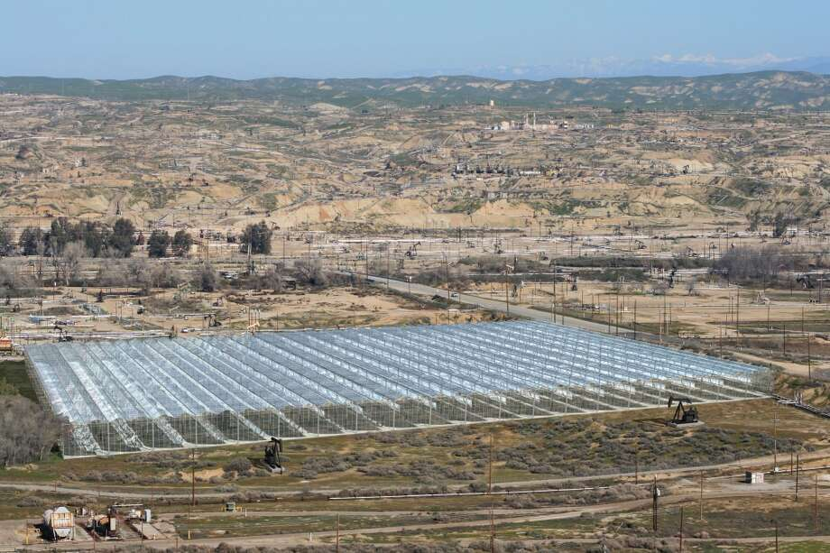 A rendering of GlassPoint's solar enhanced oil recovery system in Kern County, Calif. (GlassPoint photo)