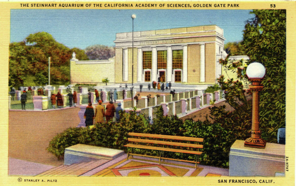 Vintage linen postcard showing the exterior of the Steinhart Aquarium and the surrounding grounds.