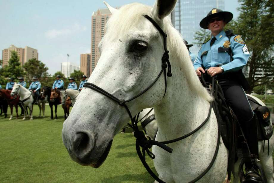 Houston Police Department Mounted Patrol Sgt. Leslie Wills with her horse Nacho after a graduation ceremony for eight new mounted patrol officers at Discovery Green. Photo: Billy Smith II, Chronicle / © 2013 Houston Chronicle