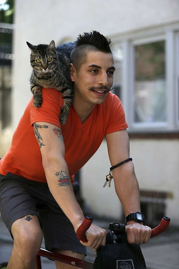 Meows on wheels: Instead of a helmet, Rudi Saladia wears a cat when he buzzes around Philadelphia on his bike. Mary Jane, his tabby, keeps her perch despite the speed bumps and potholes of the City of Brotherly Love. Photo: Matt Rourke, Associated Press