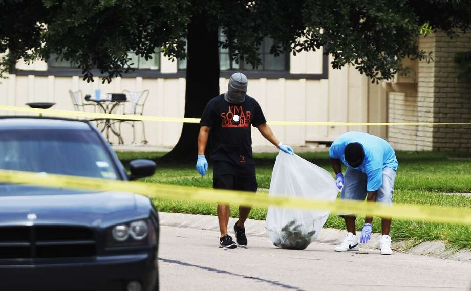 Undercover police pick up marijuana as they investigate a shooting in the 5100 block of Poinciana, May 24.