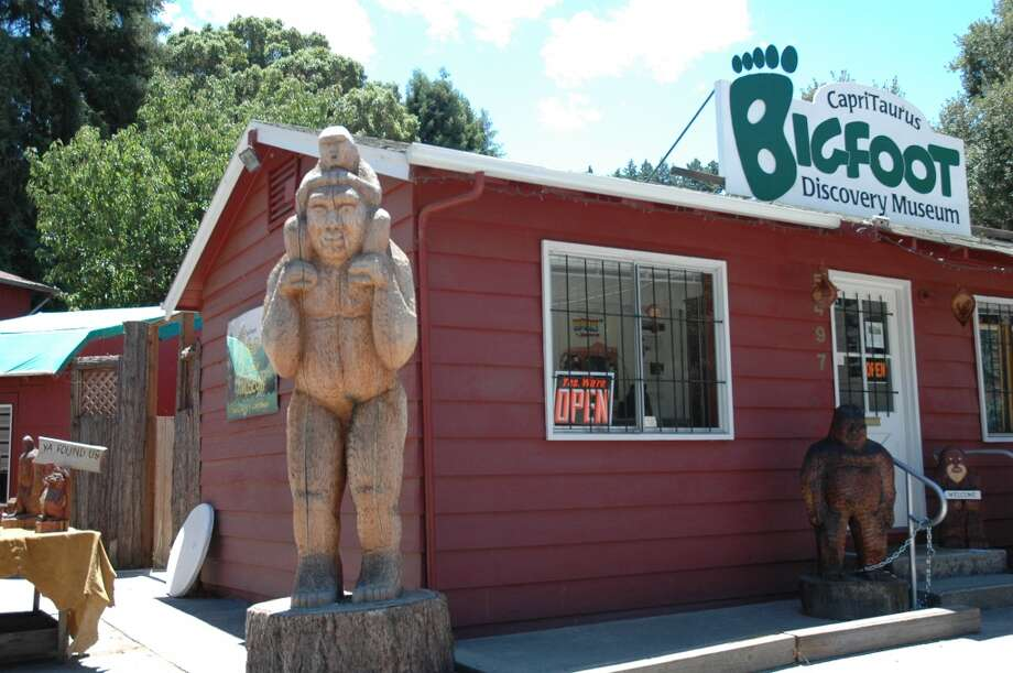 Big into Bigfoot:Lifelong collector Michael Rugg opened  the  Bigfoot Discovery Museum in Felton in 2004. It's on Highway 9, across the road from Henry Cowell Redwoods State Park (Santa Cruz County.)