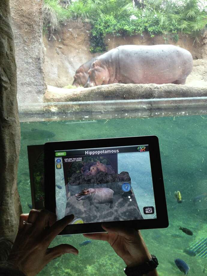 The SA Zoo-AR app brings animals to life in 3-D augmented reality with hands-on animation. Users can tap on question coins to learn more about the animal. Photo: Courtesy San Antonio Zoo