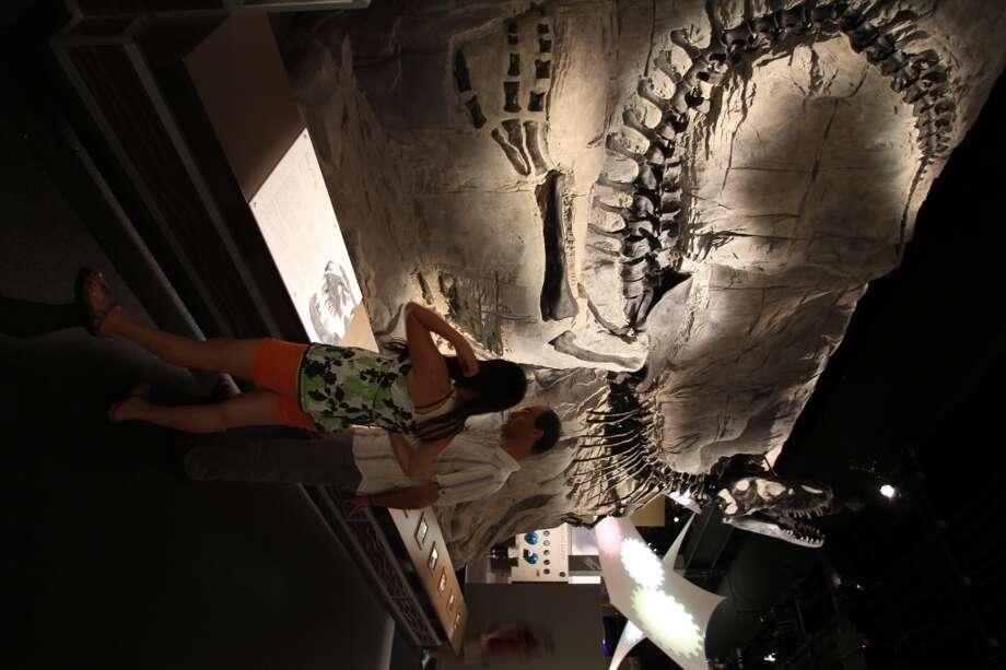 A display shows a complete dinosaur skeleton, still partially encased in 70 million year old rock.