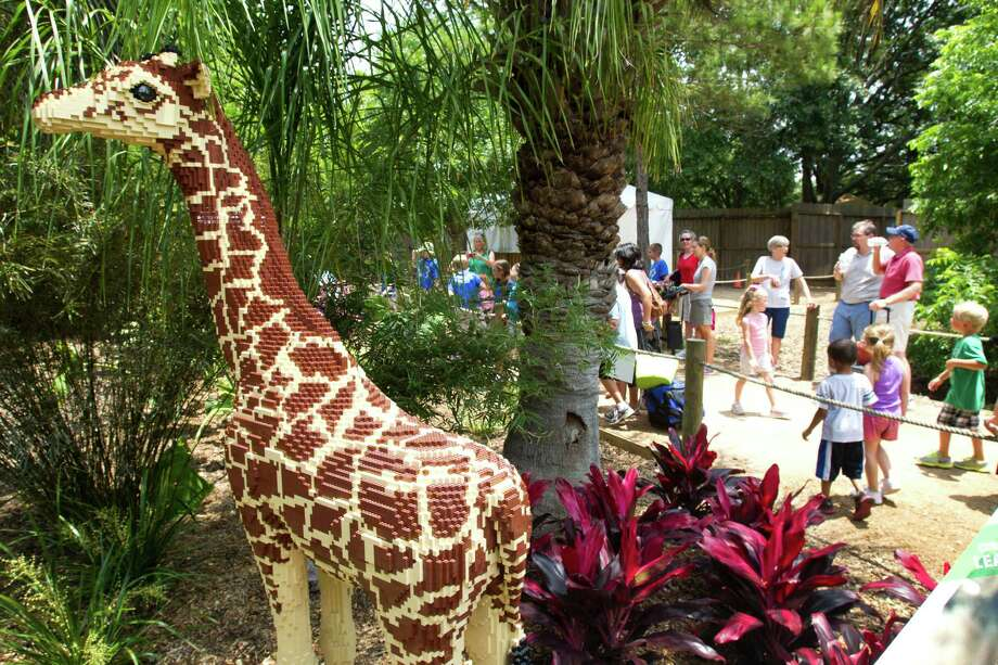 A LEGO giraffe is seen in the new Animals Assembled exhibit during a preview at the Houston Zoo Friday, May 24, 2013, in Houston. More than two dozen LEGO brick animal sculptures, representing 10 species including flamingos, a tiger, zebra and fish are on display opening May 25 through Labor Day. Photo: Brett Coomer, Houston Chronicle / © 2013 Houston Chronicle