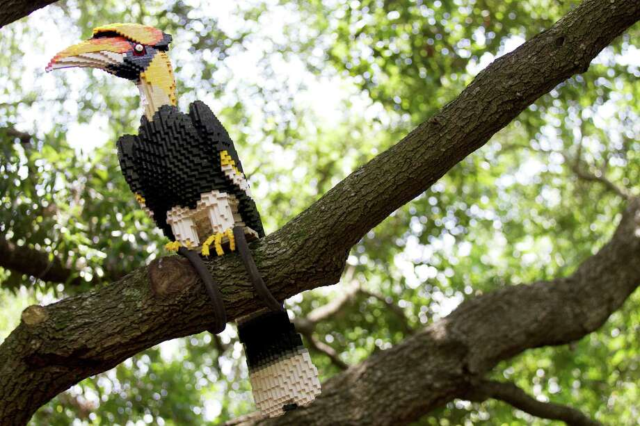 A LEGO great hornbill is seen in the new Animals Assembled exhibit during a preview at the Houston Zoo Friday, May 24, 2013, in Houston. More than two dozen LEGO brick animal sculptures, representing 10 species including flamingos, a tiger, zebra and fish are on display opening May 25 through Labor Day. Photo: Brett Coomer, Houston Chronicle / © 2013 Houston Chronicle