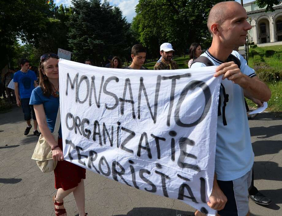 "Protesters hold a banner reading ""MONSANTO is a terrorist organisation!"" during a demonstration against anti-genetically modified organism (GMOs) and US chemical giant Monsanto in Bucharest May 25, 2013."