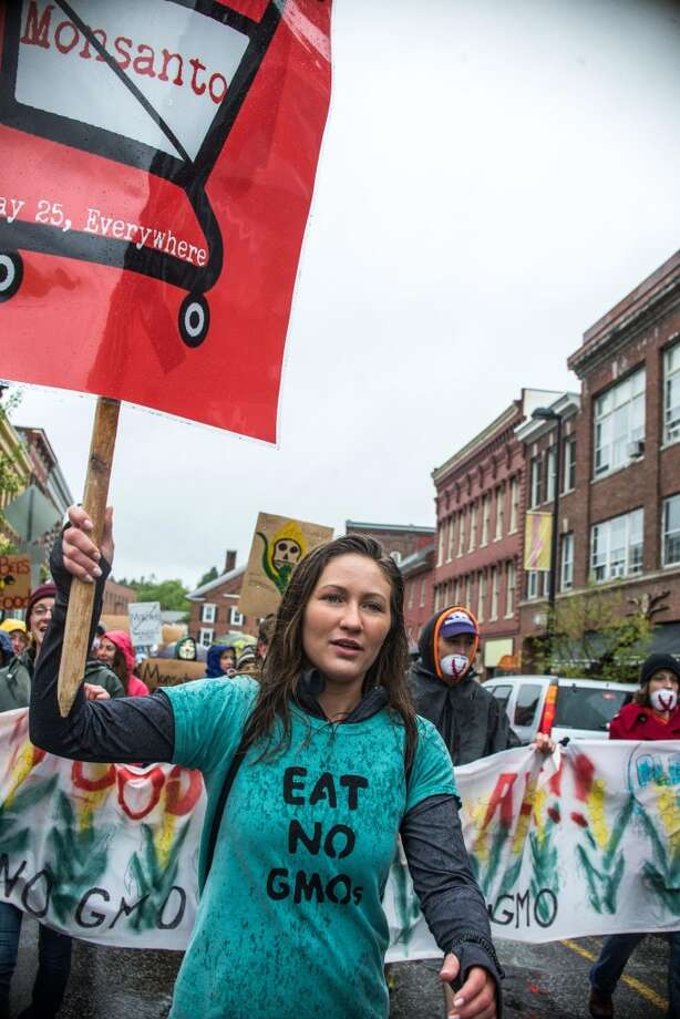 Ashley Cote leads hundreds of marchers during a protest against Monsanto in Montpelier, Vt. on Saturday, May 25, 2013. Marches and rallies against seed giant Monsanto were held across the U.S. and in dozens of other countries Saturday. Protesters say they want to call attention to the dangers posed by genetically modified food and the food giants that produce it. Monsanto Co., based in St. Louis, said Saturday its seeds improve agriculture by helping farmers produce more from their land while conserving resources such as water and energy.