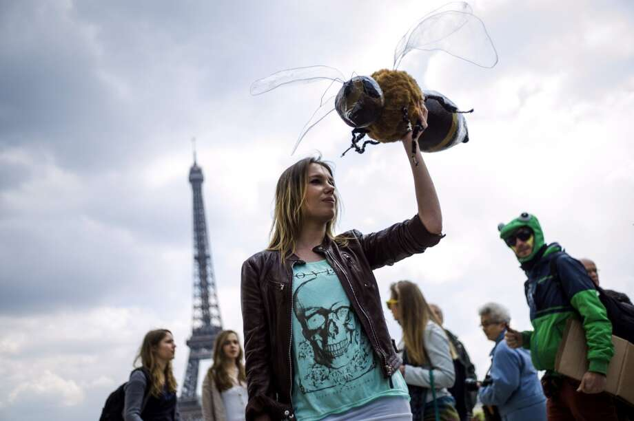 Anti-genetically modified organism (GMO) activists gather on the Trocadero square near the Eiffel tower during a demonstration against GMOs and US chemical giant Monsanto on May 25, 2013 in Paris.