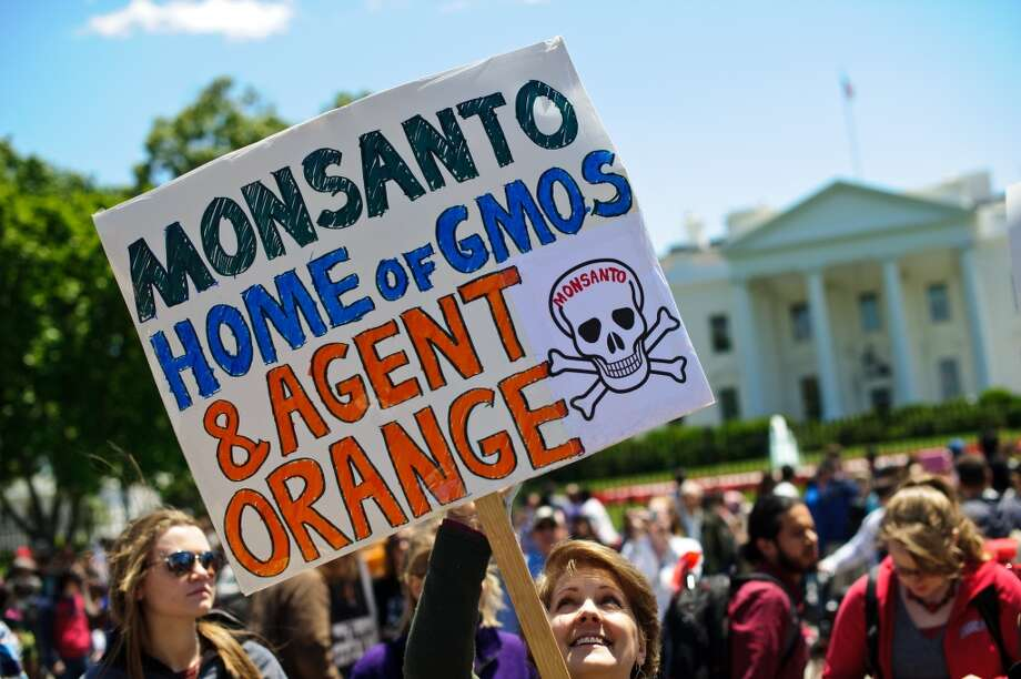 People hold signs during a demonstration against agribusiness giant Monsanto and genetically modified organisms (GMO) in front of the White House in Washington on May 25, 2013.