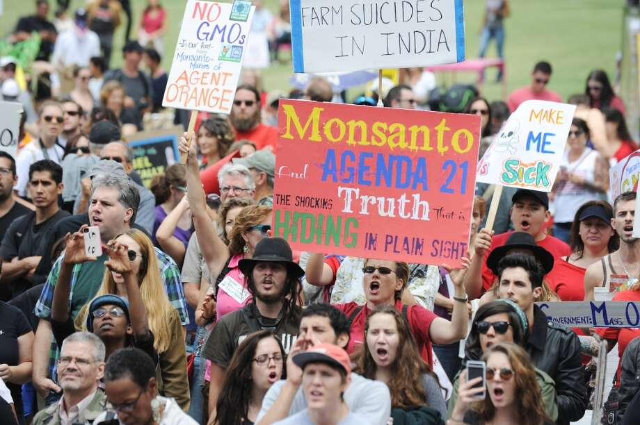 People carry signs during a protest against agribusiness giant Monsanto in Los Angeles on May 25, 2013. Marches and rallies against Monsanto and genetically modified organisms (GMO) in food and seeds were held across the US and in other countries with protestors calling attention to the dangers posed by GMO food.