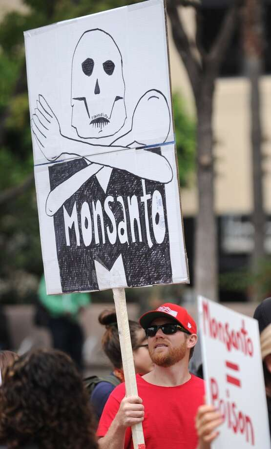 People carry signs during a protest against chemical giant Monsanto in Los Angeles, California, May 25, 2013. Marches and rallies against Monsanto and genetically modified organisms (GMO) food and seeds were held across the U.S. and in other countries with protestors calling attention to the dangers posed by GMO food.