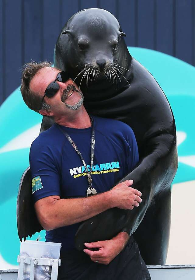 You should have seen me try to juggle before Guenter! I was all flippers: 