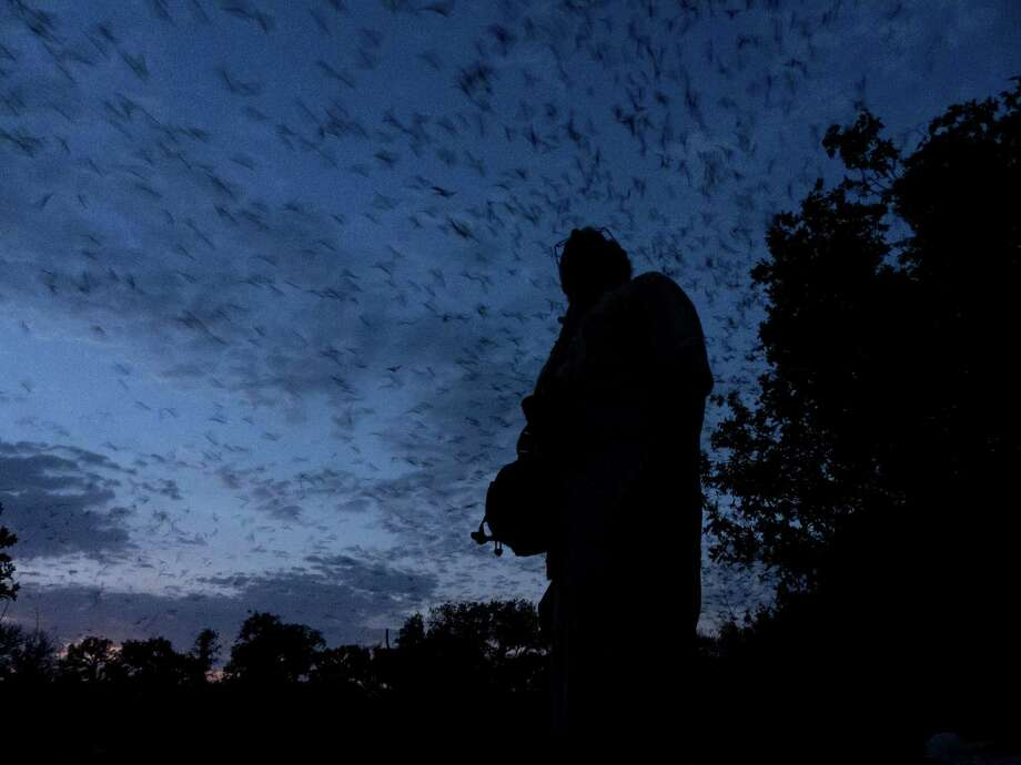 TOP: Todd Miner watches as millions of Mexican free-tailed bats emerge from the Bracken Bat Cave. If the Crescent Hills subdivision is built, homes will be located near the cave entrance. Photo: Photos By Billy Calzada / San Antonio Express-News