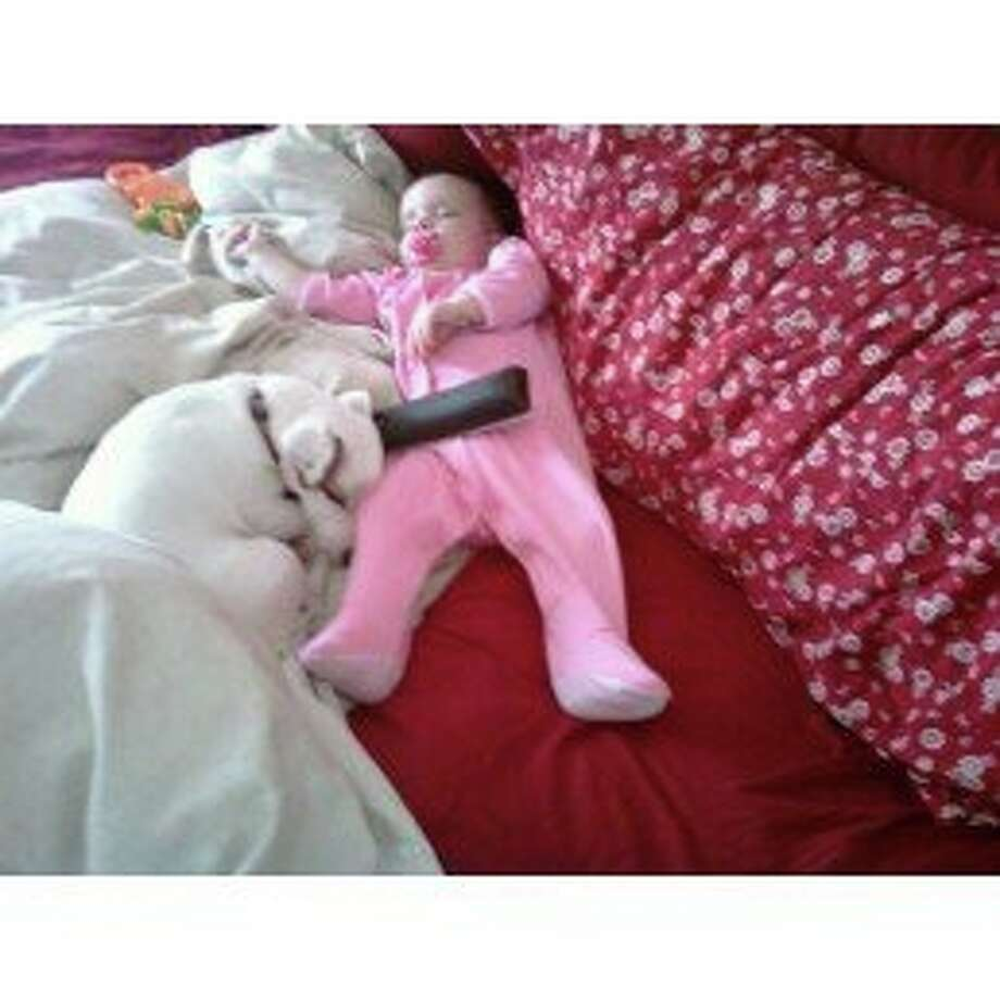 Accessories needed to fall asleep: a remote control, a binkie, and a Jack Russell Terrier. Photo: Tracey Rentner Glen